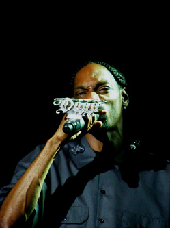 Snoop_Dog_Ice_Grip_On_Microphone_jpg